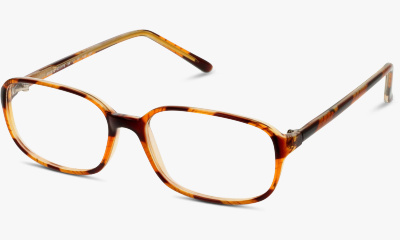 Lunettes de vue The One TOAF22 NN BROWN