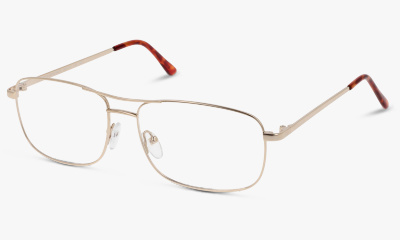 Lunettes de vue The One TOM64 C03 SHINY GOLD / TIPS TORTOISE
