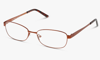 Lunettes de vue The One TOEF05 NN BROWN--BROWN