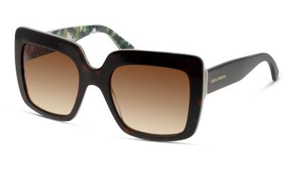 Lunettes de soleil Dolce & Gabbana 4310 315113 HAVANA ON PRINT HYDRANGEA