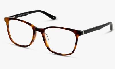 Lunettes de vue In Style ISHT09 HB HAVANA - BLACK