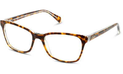 Lunettes de vue Ray Ban 5362 5082 TOP HAVANA ON TRANSPARENT