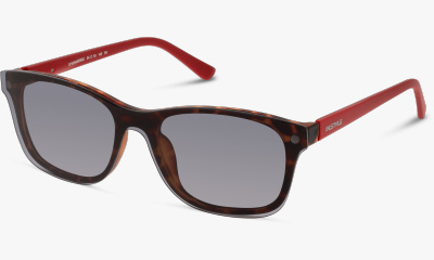 Lunettes de vue In Style Mask ISFM32 HR MATT HAVANA-MATT DARK RED